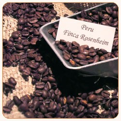 Peru Finca Rosenheim (Rohkaffee aus organischem Anbau)